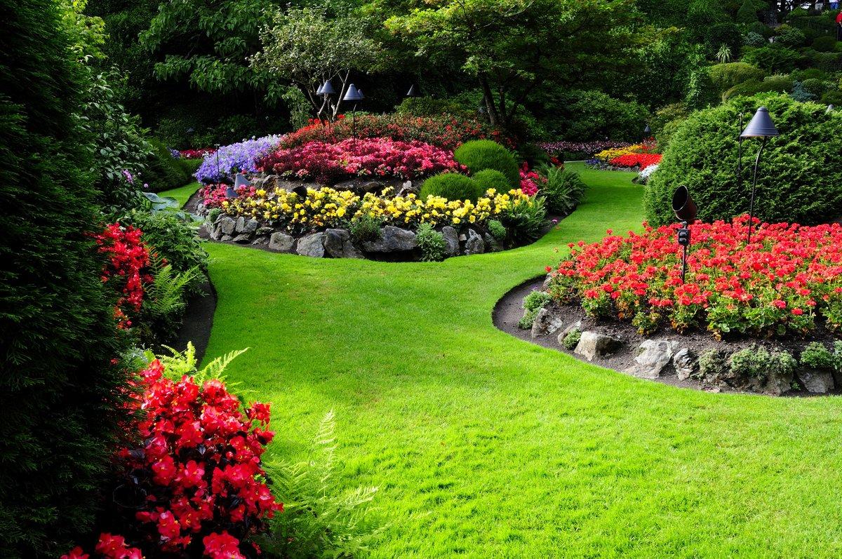 Картинки сада с цветами и деревьями