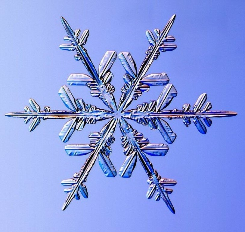 выращивания картинка в виде снежинки сделала фото