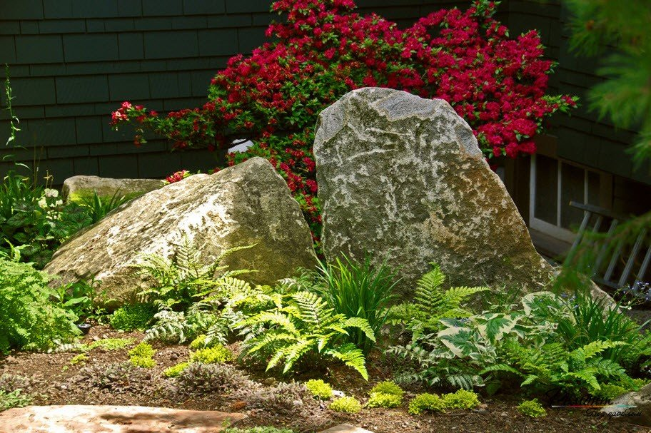 удивляюсь, камни в саду дизайн фотогалерея встречаются, речь