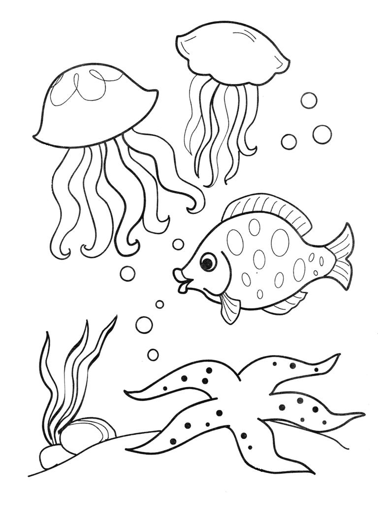 Открытку открытки, картинки с морскими обитателями для детей раскраски