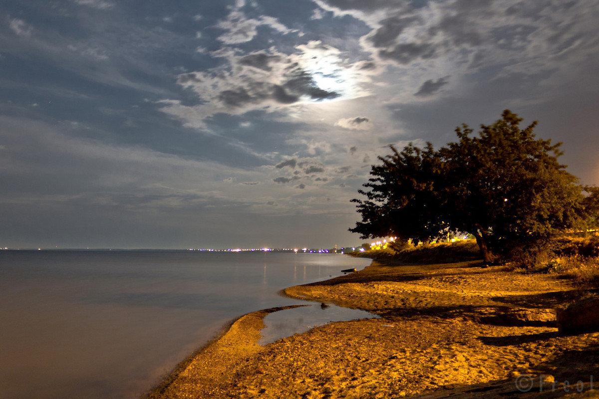 ленты пестрят набережные азовского моря фото бы
