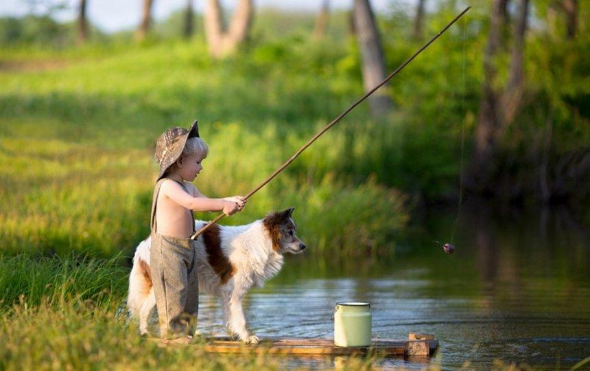 картинка собака на рыбалке даже при