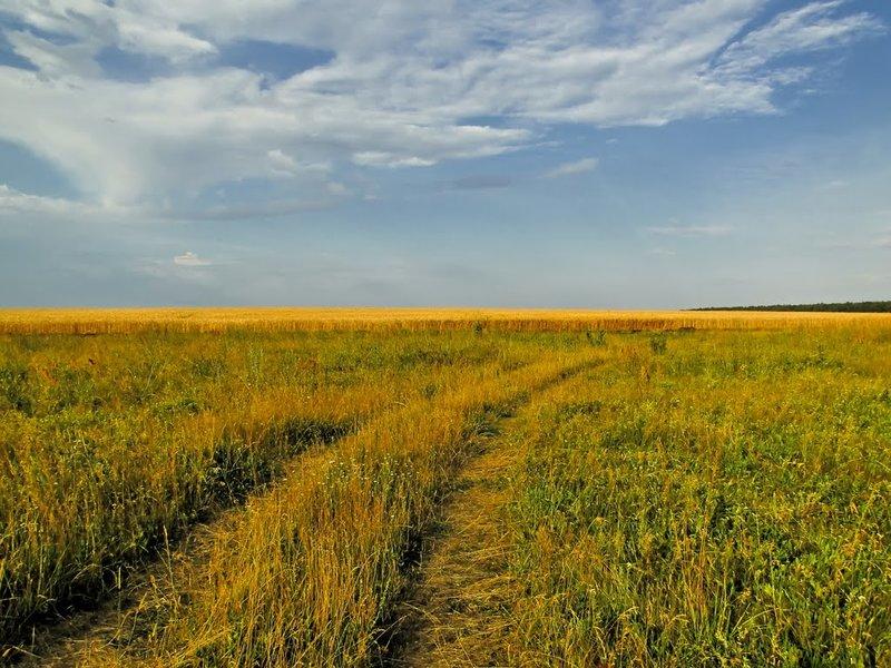 Покровский район | Mapio.net ... Русское поле ...