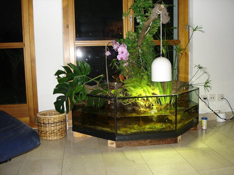 Палюдариум – эдакое живописное болотце.