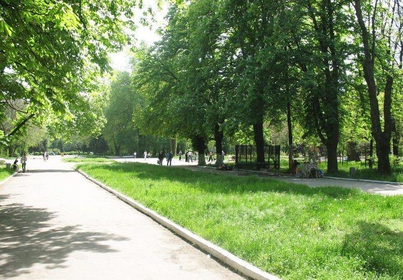 Аллея в Преображенском парке.