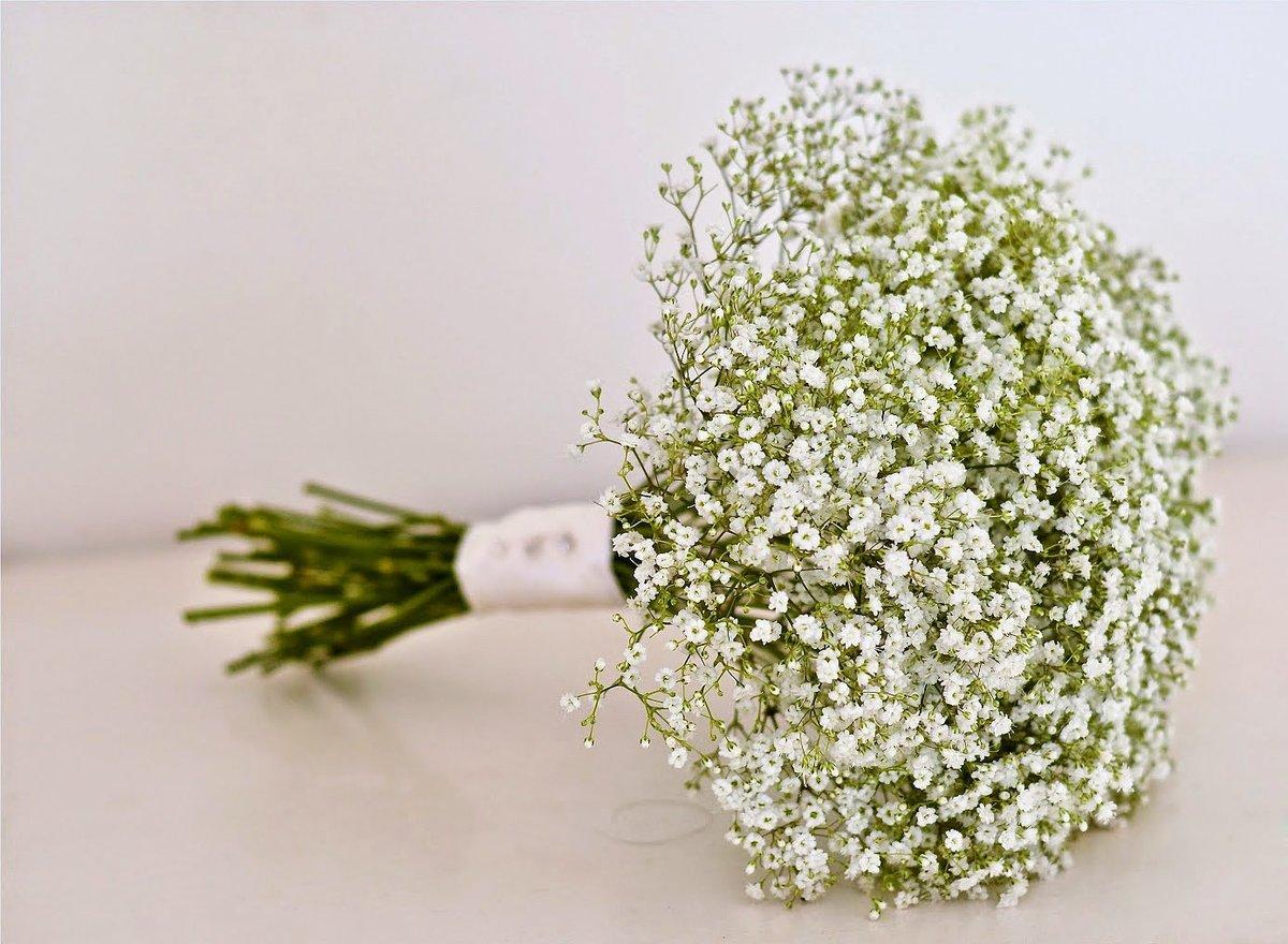 Маленькие беленькие цветочки в букетах, россия доставки