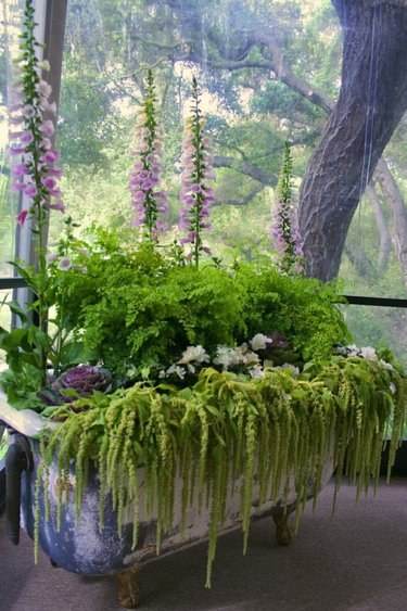 украшение садов из растений
