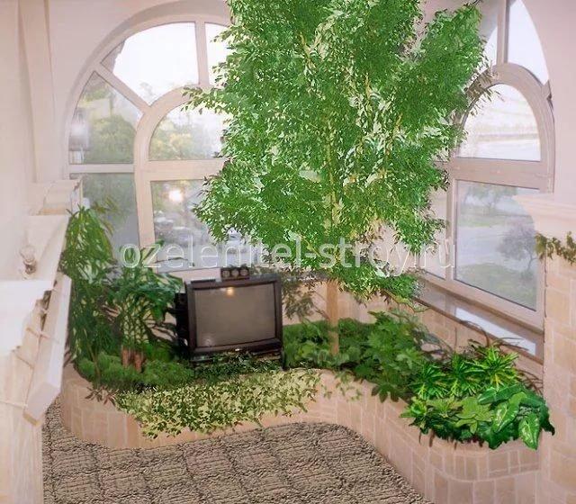 """Фото зимних садов на лоджии."""" - карточка пользователя ksenia."""
