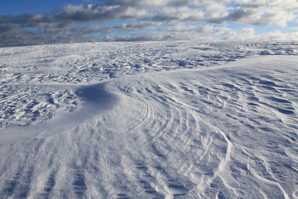 работать таком картинки поля в снегу годами пересуды утихли