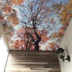 Индивидуальный дизайн балкона в квартире студии