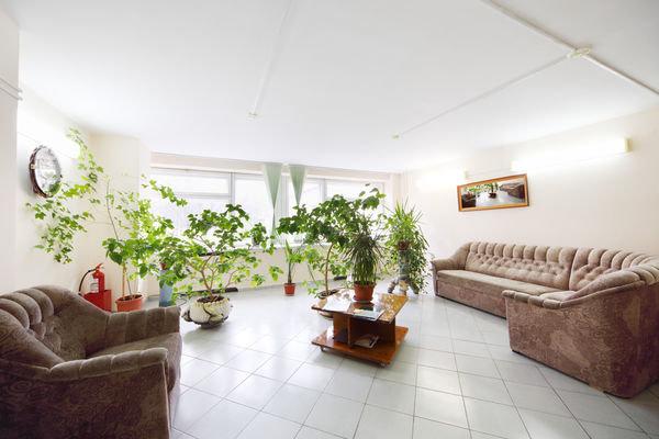 Растения в центре гостиной с коричневой мягкой мебелью