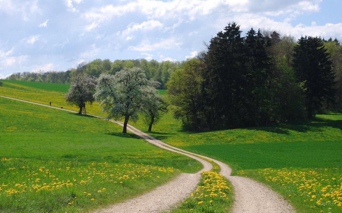 Картинки природа пейзаж