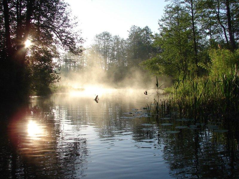 Красивый рассвет на берегу реки