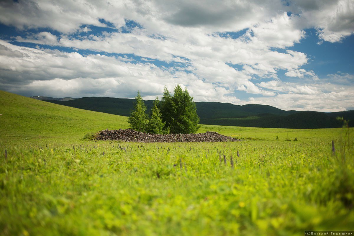 Природа алтайского края в картинках