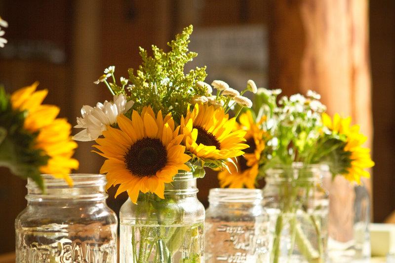 """Крупные композиции, """"шапки"""" из цветов на рустикальной свадьбе неуместны. В оформлении используются скромные, вплоть до полевых, цветы: гипсофила, суккуленты, ромашки, подсолнухи, мелкие садовые розы. Композиции, как правило, составляются из множества мелких элементов: стеклянных бутылок, банок, в которых стоят растения. Букет невесты отличается непритязательностью, в его основе также лежат простые полевые цветы, дополненные зеленью. Форма букета — естественная, слегка """"растрепанная"""". В бутоньерку жениха часто добавляются пшеничные колосья и сухоцветы."""