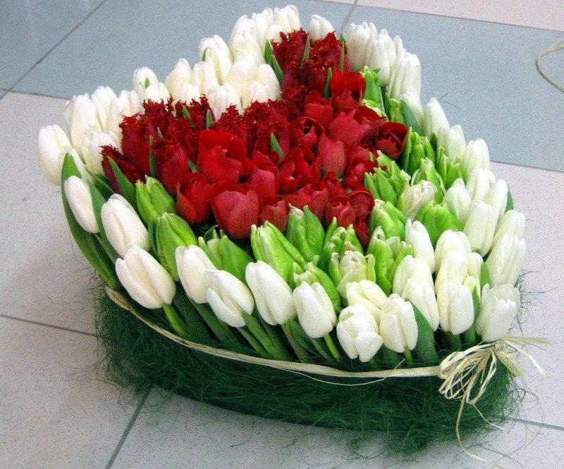 Картинки с днем тюльпанов, украсить