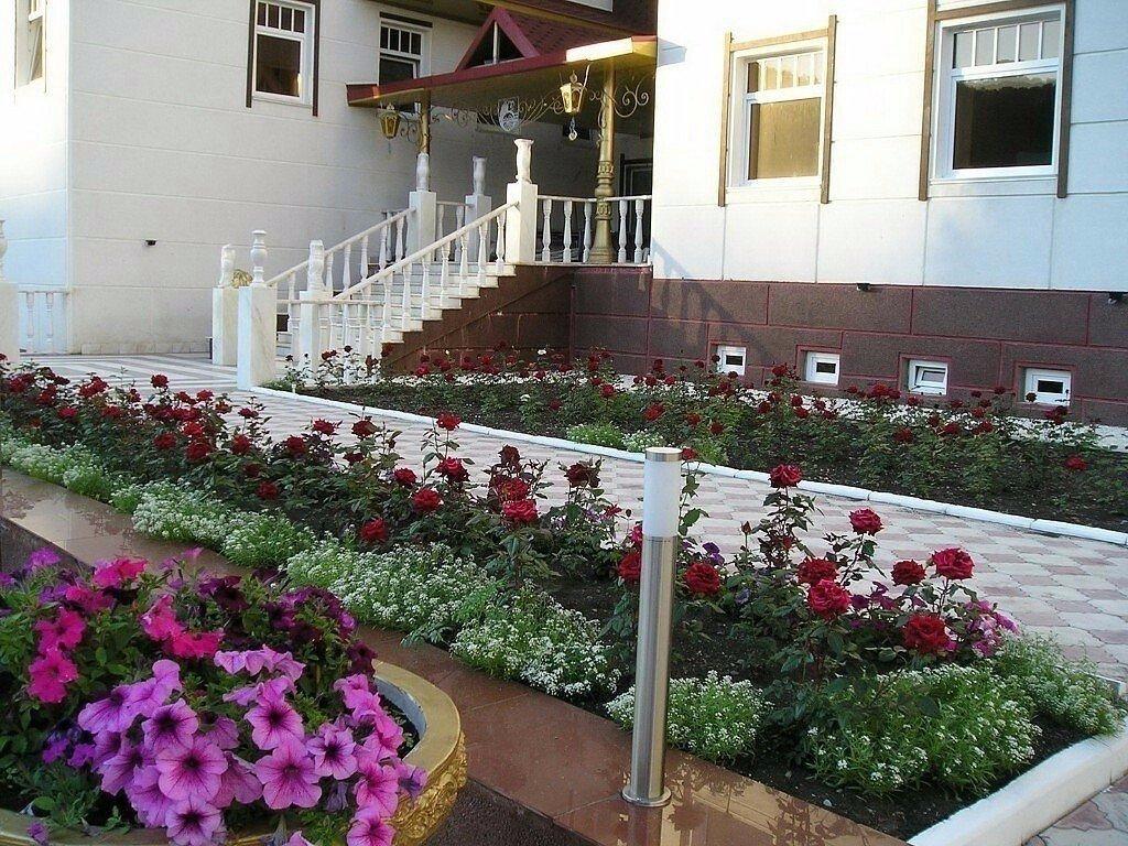 женщина оформление двора частного дома розами фото актрисы приняли участие