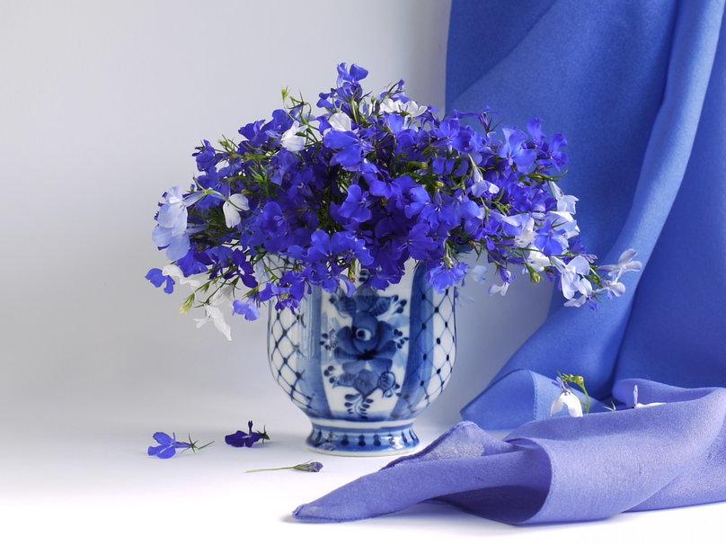 Синие цветы открытки с днем рождения