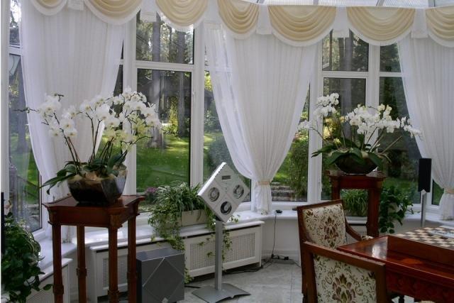 орхидеи и белые шторы