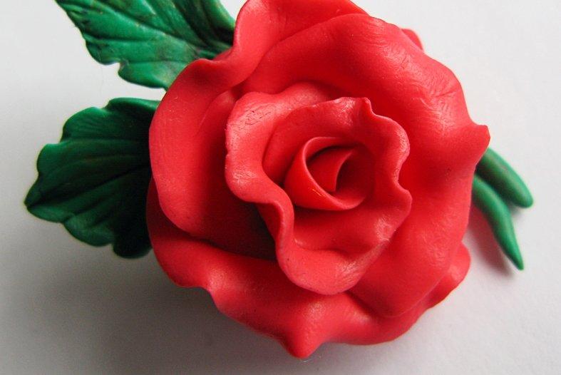 этом роза картинки из пластика дело том, что