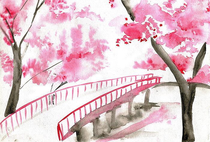 Сакура рисунок акварелью для детей