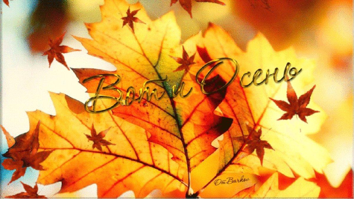 Открытки в картинках осень, открытки старым