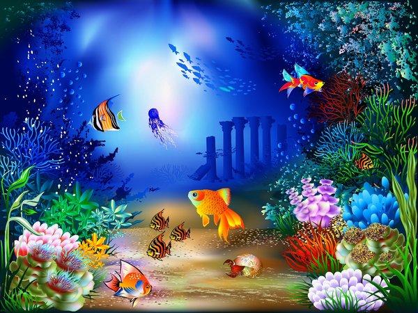 Качественные HD обои рыбы 2560x1600, фото подводный мир скачать ...   450x600