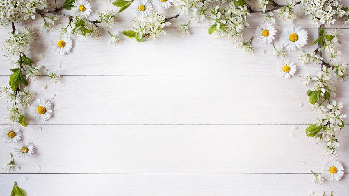 Открытки пустые цветы, тебя люблю картинки
