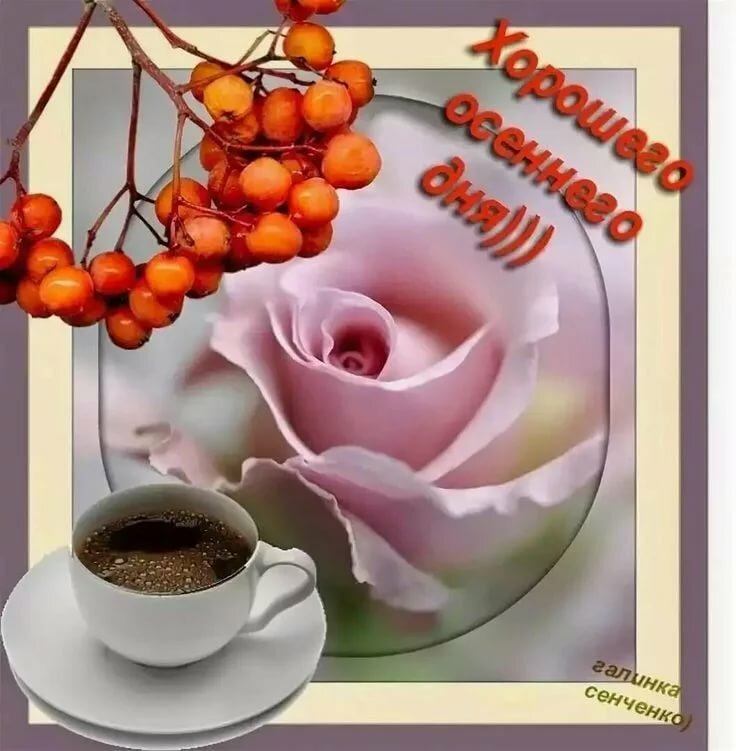 Открытки доброе утро и доброго дня осень