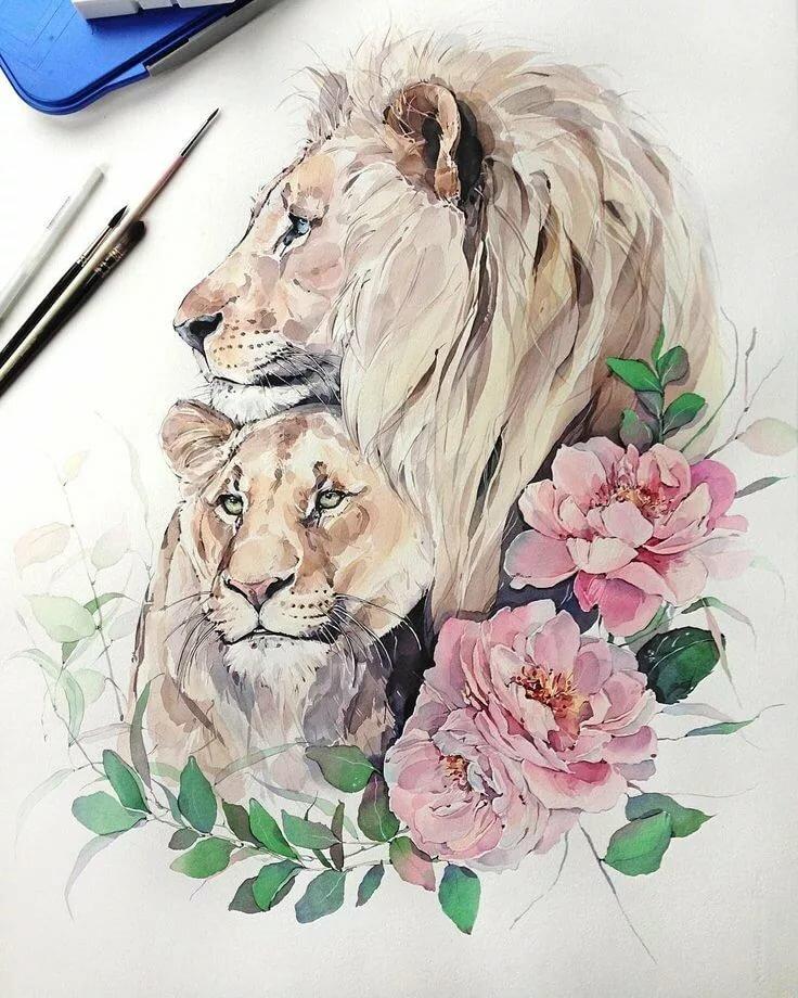 Лев и львица рисунки это своеобразная