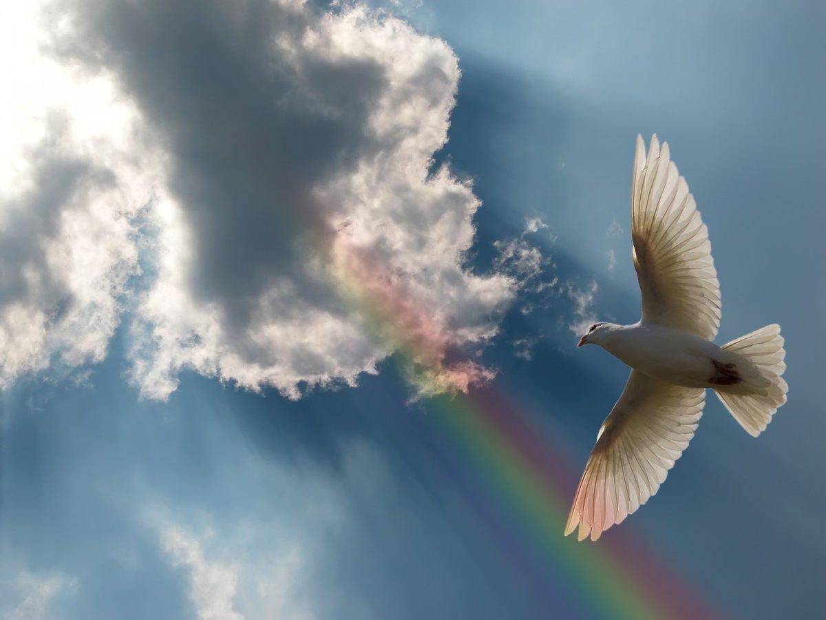 День грядущий, поздравления в небе картинки