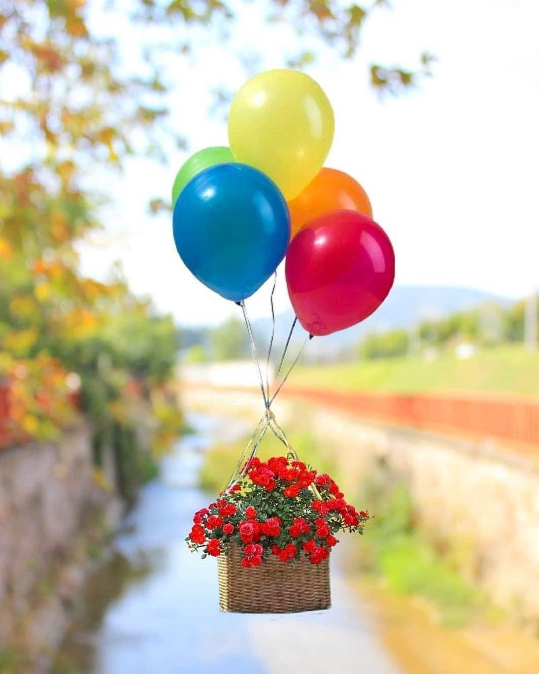 Картинки с шариками солнышком цветами