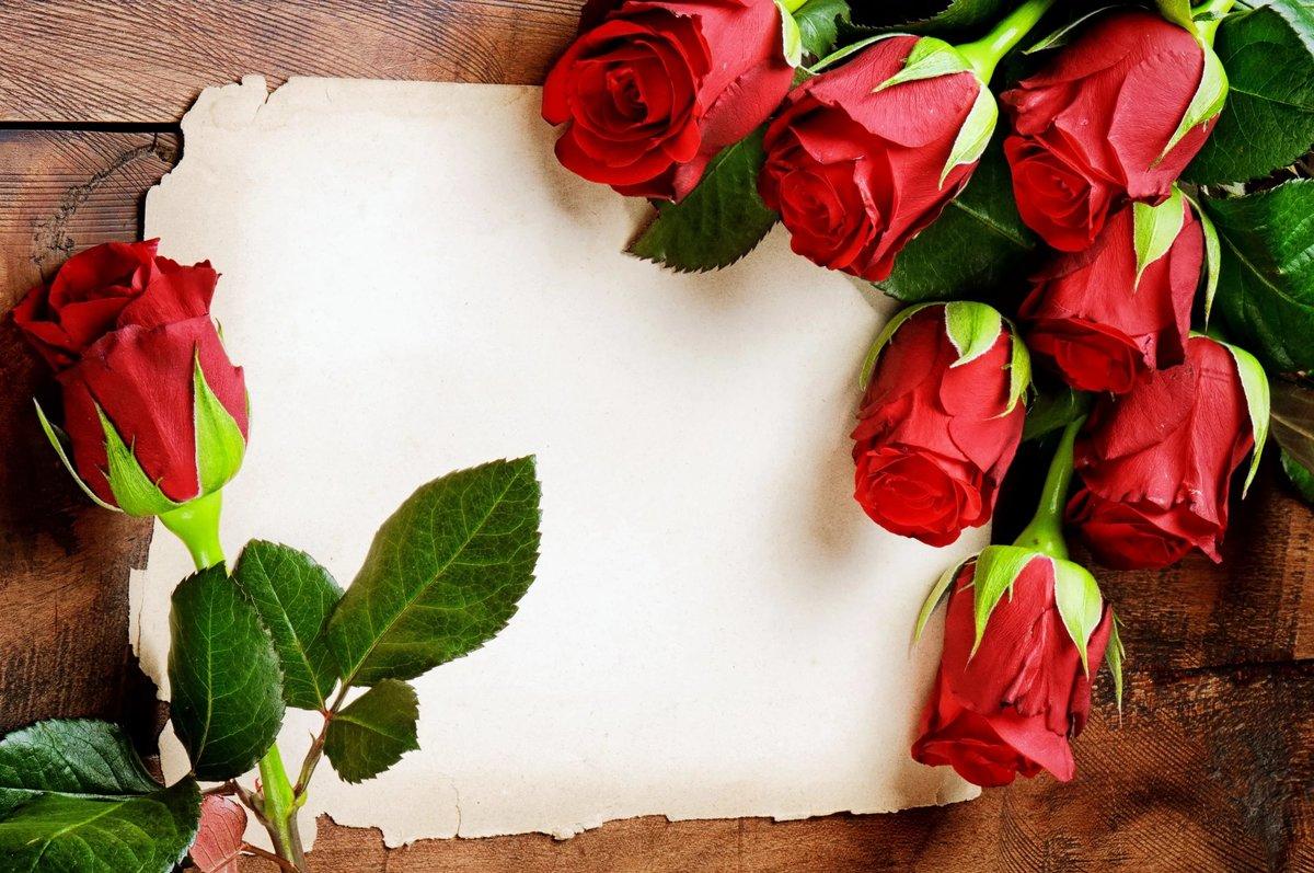 фон на открытку с розами горных холмов