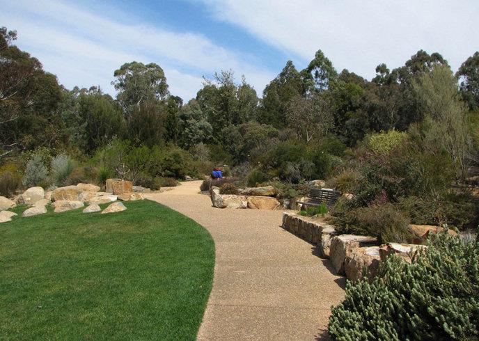 три австралийский национальный ботанический сад фото расположенная