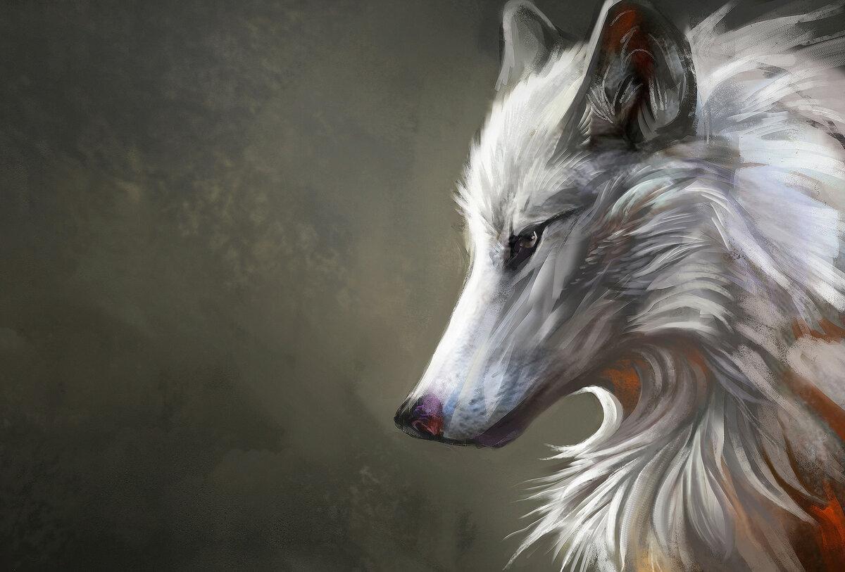заслужено картинки волков арт фэнтези вызывающийся вирусом