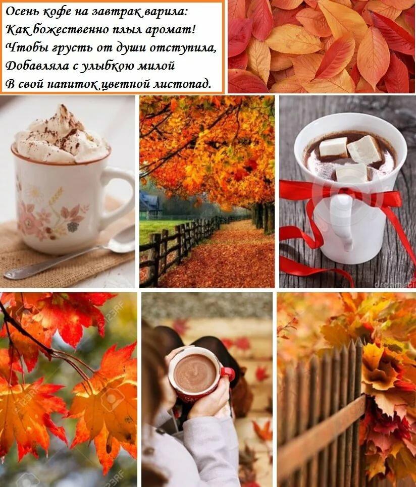 доброе утро сентябрь картинки с пожеланиями стильные