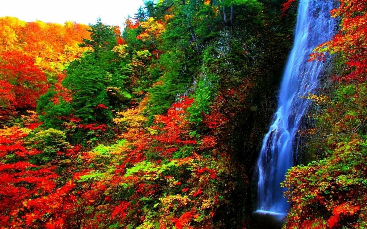 Осень картинки водопады