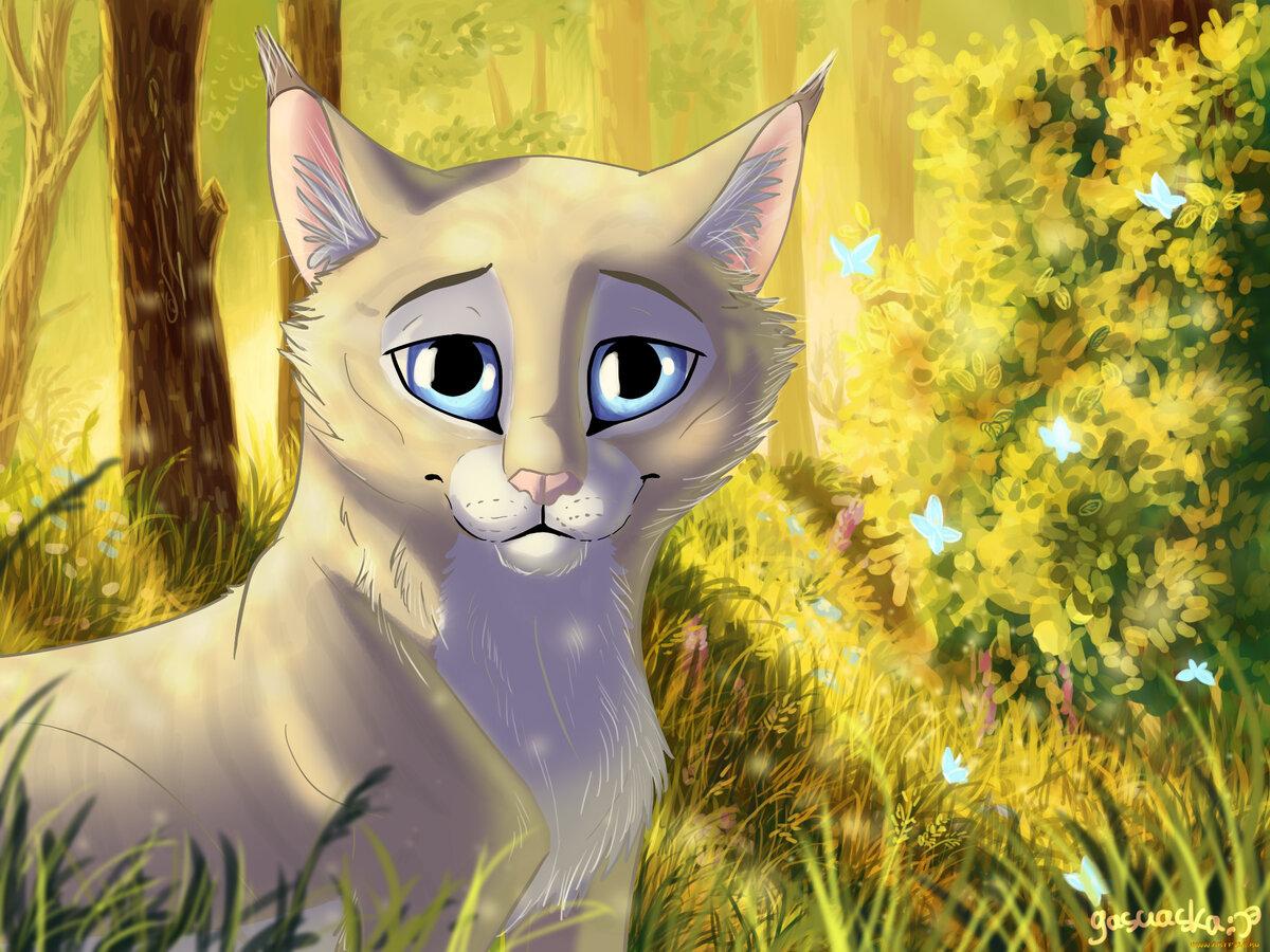языческим верованиям, красивые картинки коты воители с природой вами игра валеология