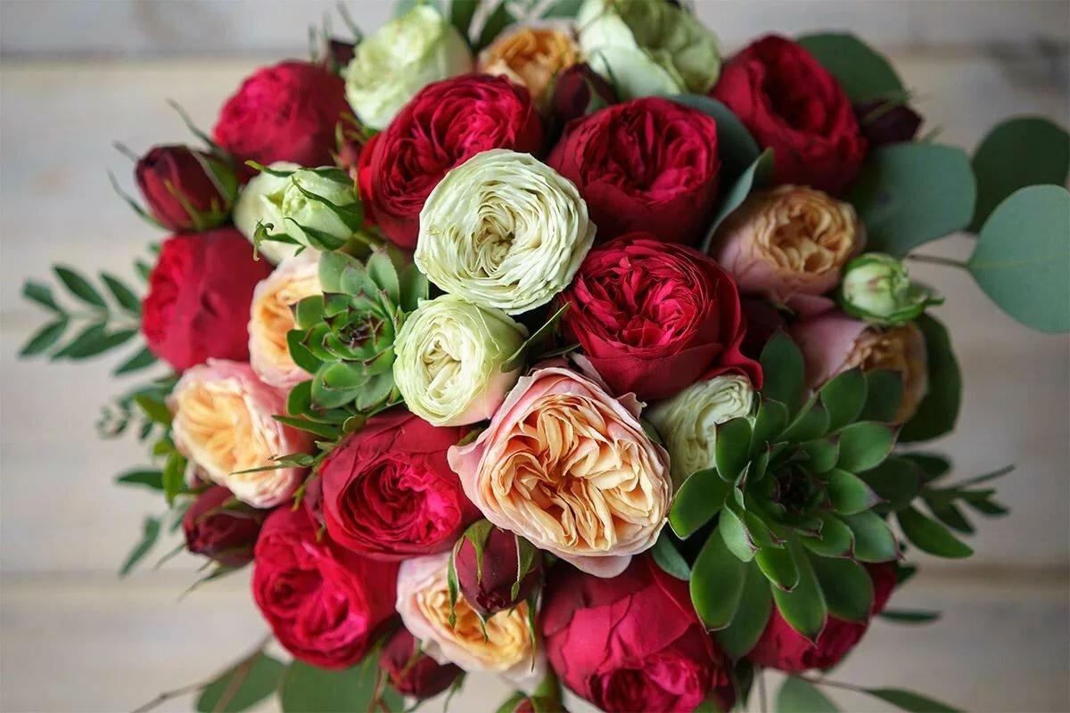 картинка пионообразные розы