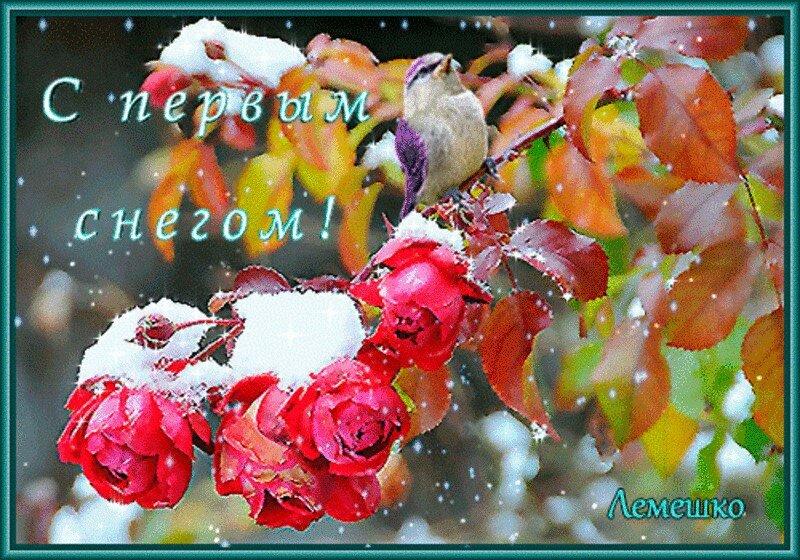всех разнообразных блестящие открытки с первым снегом пхукете один обязательных
