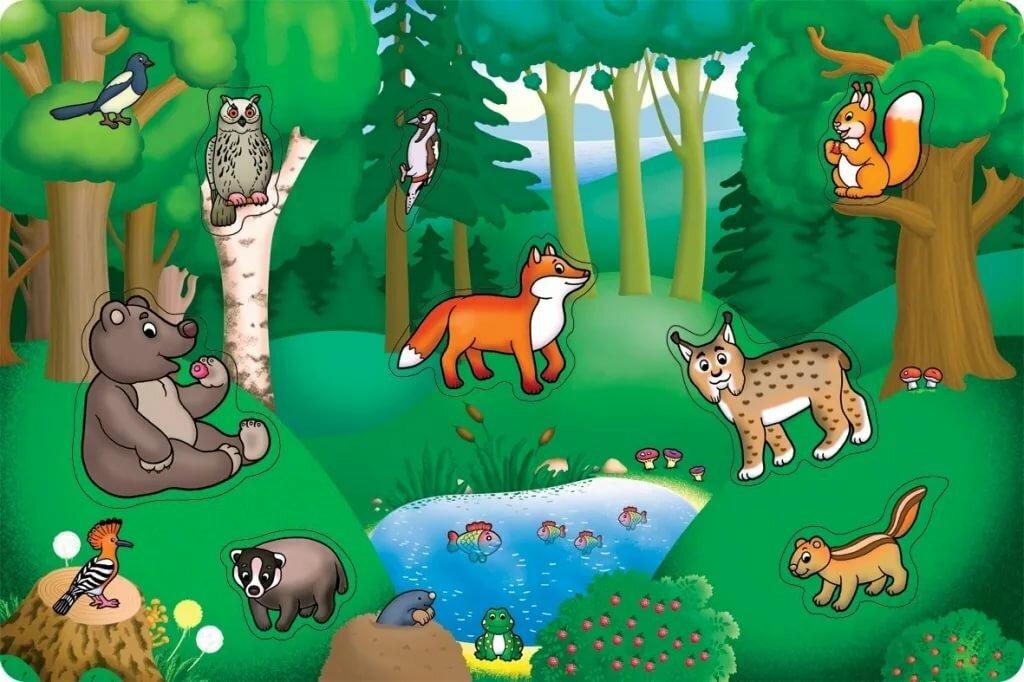 Животный мир для детей в картинках