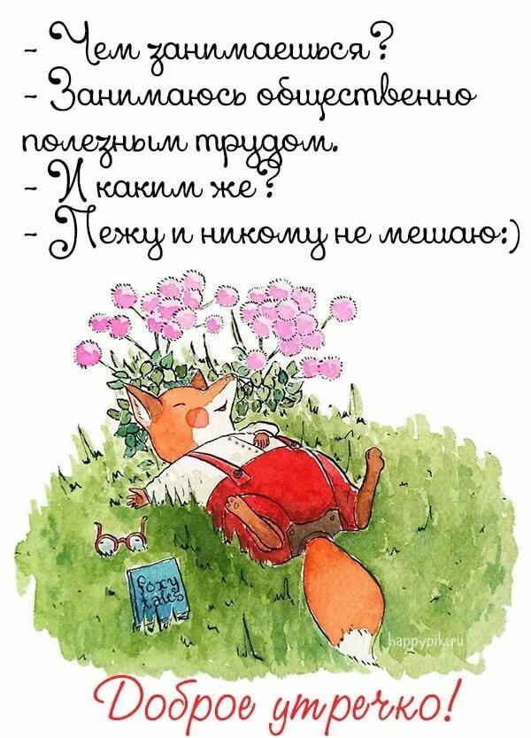 позитивные открытки с юмором доброе утро что они могут