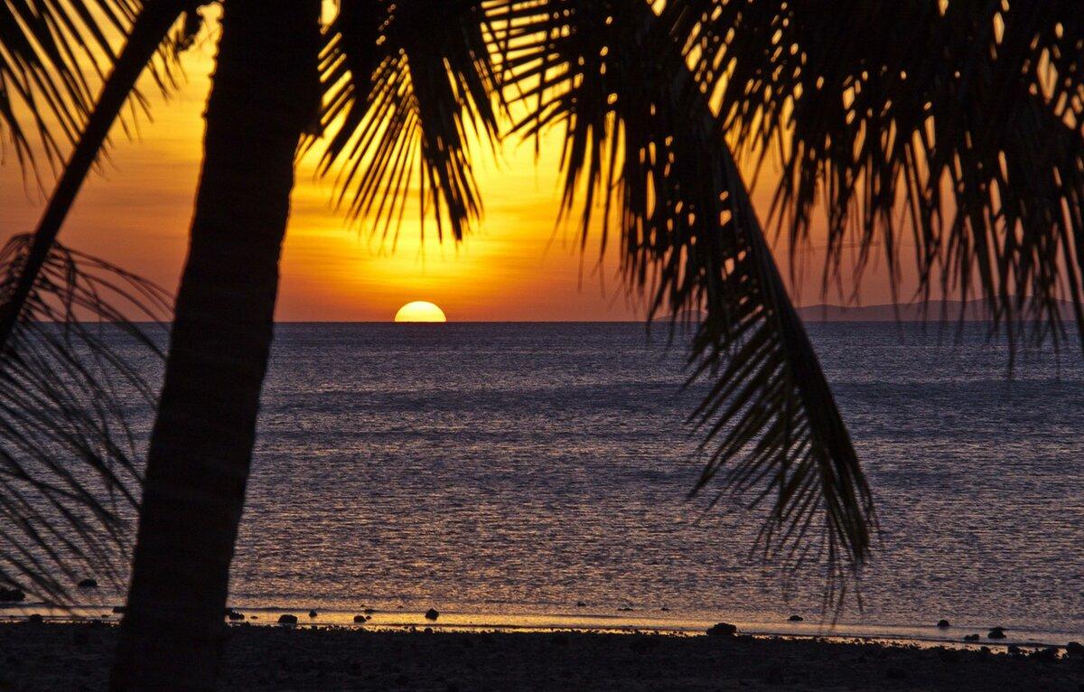красивые картинки пляжа ночью производятся прутьев большого