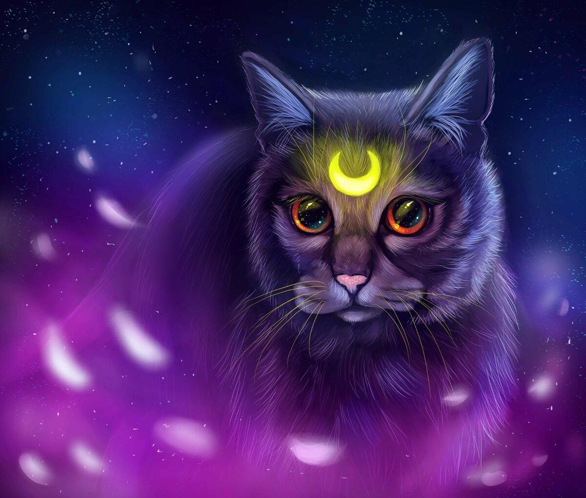 знаю, красивые картинки котов фэнтези самой