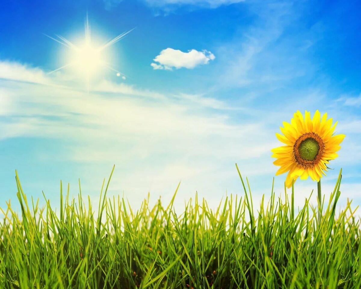 Про футбол, открытка небо и солнце