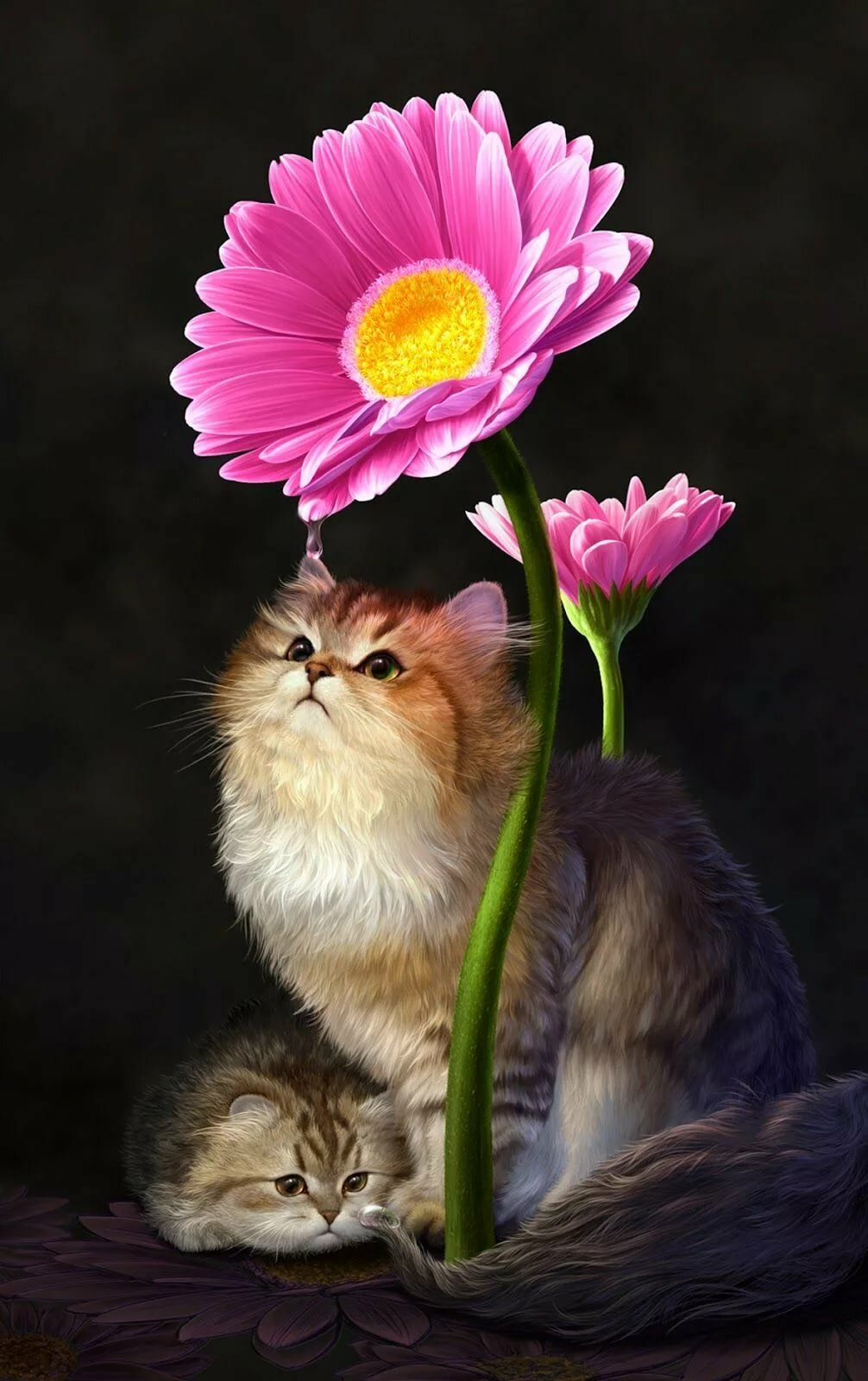 целом картинки анимации котик с цветами монтируем