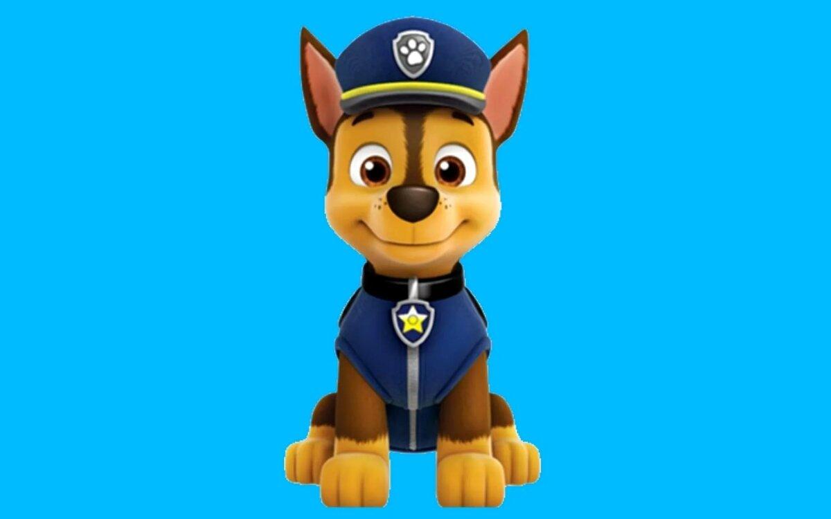 долгоцветущая щенячий патруль собака картинка собаками время