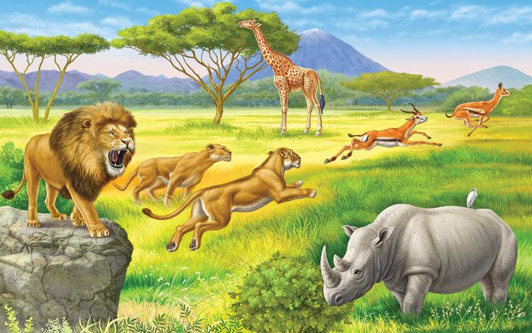 необходимая рисунок зверей африки текстов любой