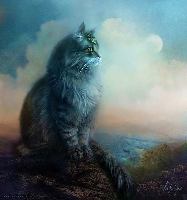 Рисунки огромных котов