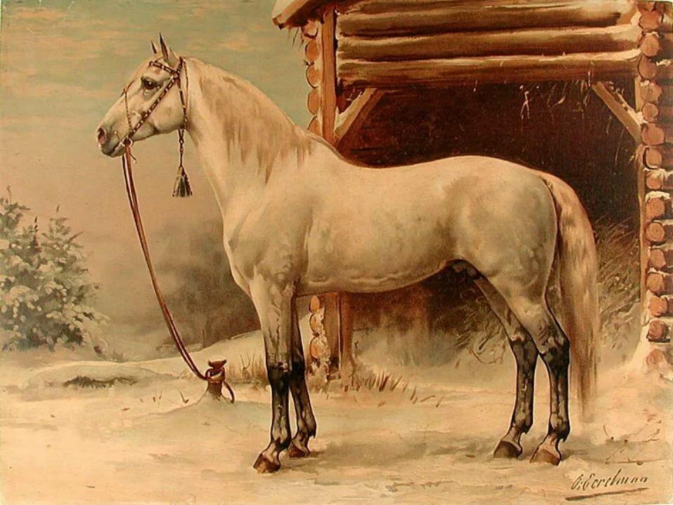 Картинки известных лошадей